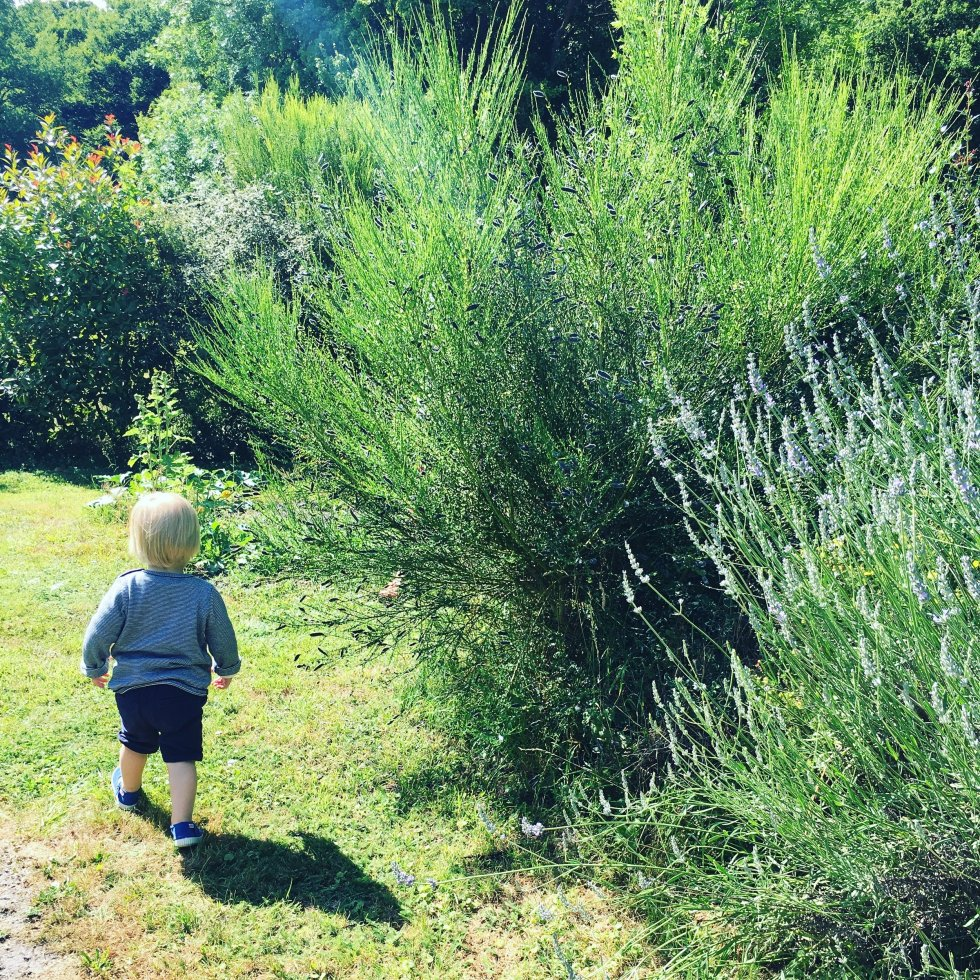 Toddler Life: La Rentrée Nourish Paris