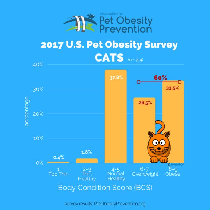 2017 U.S. Cat Obesity Graph.png