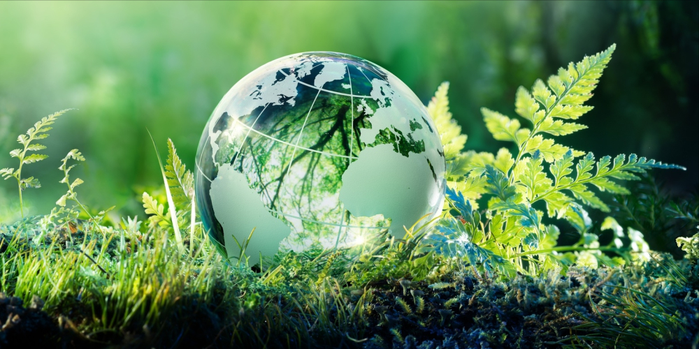 happy earth day quotes images and messages you can send