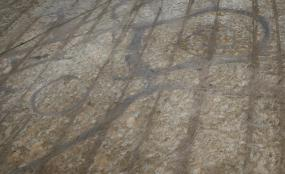 The dark marks of ancient ditches and house foundations