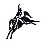 Bucking Horse Lyons Enterprises