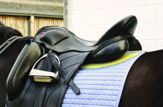 saddle cropped.JPG