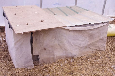 Rectangular enclosure draped with canvas and covered with plywood and corrugated roofing