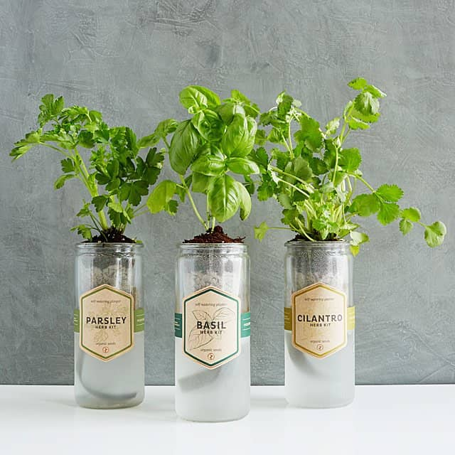 50 Awesome Housewarming Gifts For New Homeowners In 2020