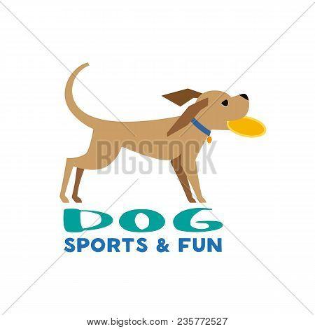 106 Best Sports Humor Kinda Images In 2020 Sports Humor Humor