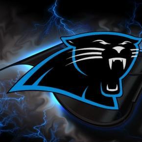 The Carolina Panthers Sir Purr mascot. eskipaper.com