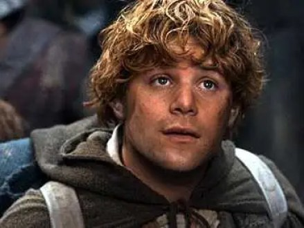 Image result for SEAN ASTIN IN LORD OF THE RINGS