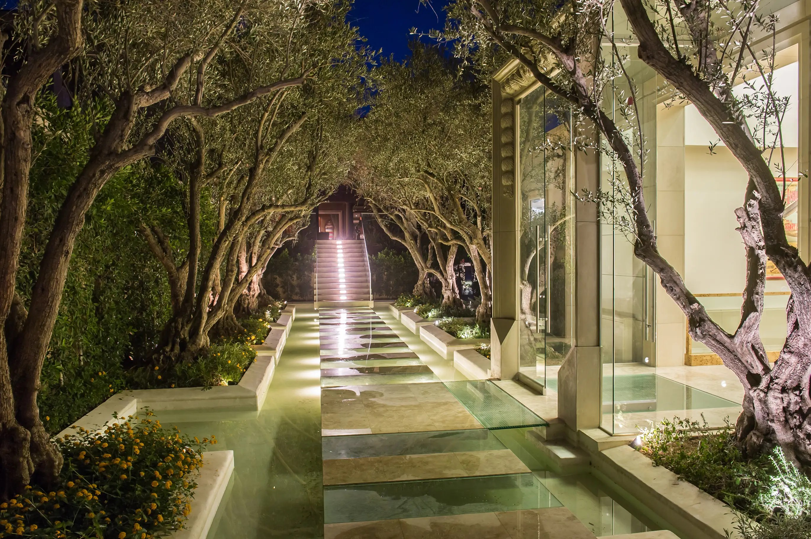 Guests enter through a floating glass-floor walkway lined with olive trees.