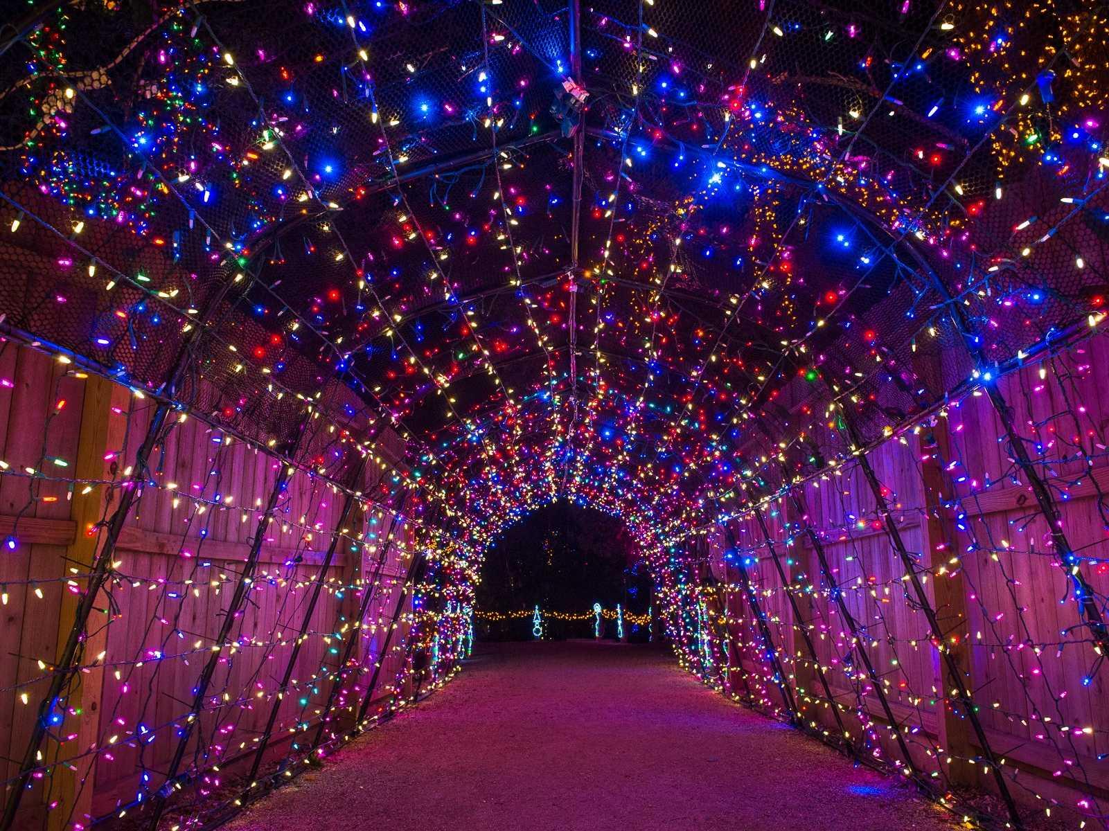 Festival Lights Houston
