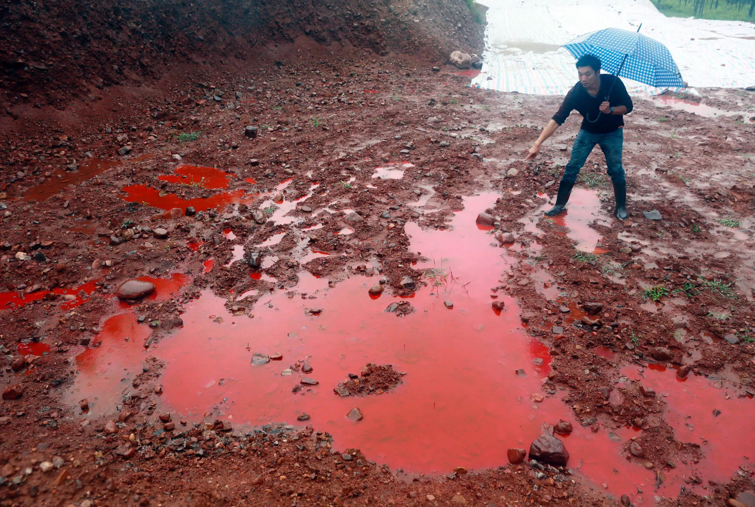 Striking Photos Of China S Polluted Water