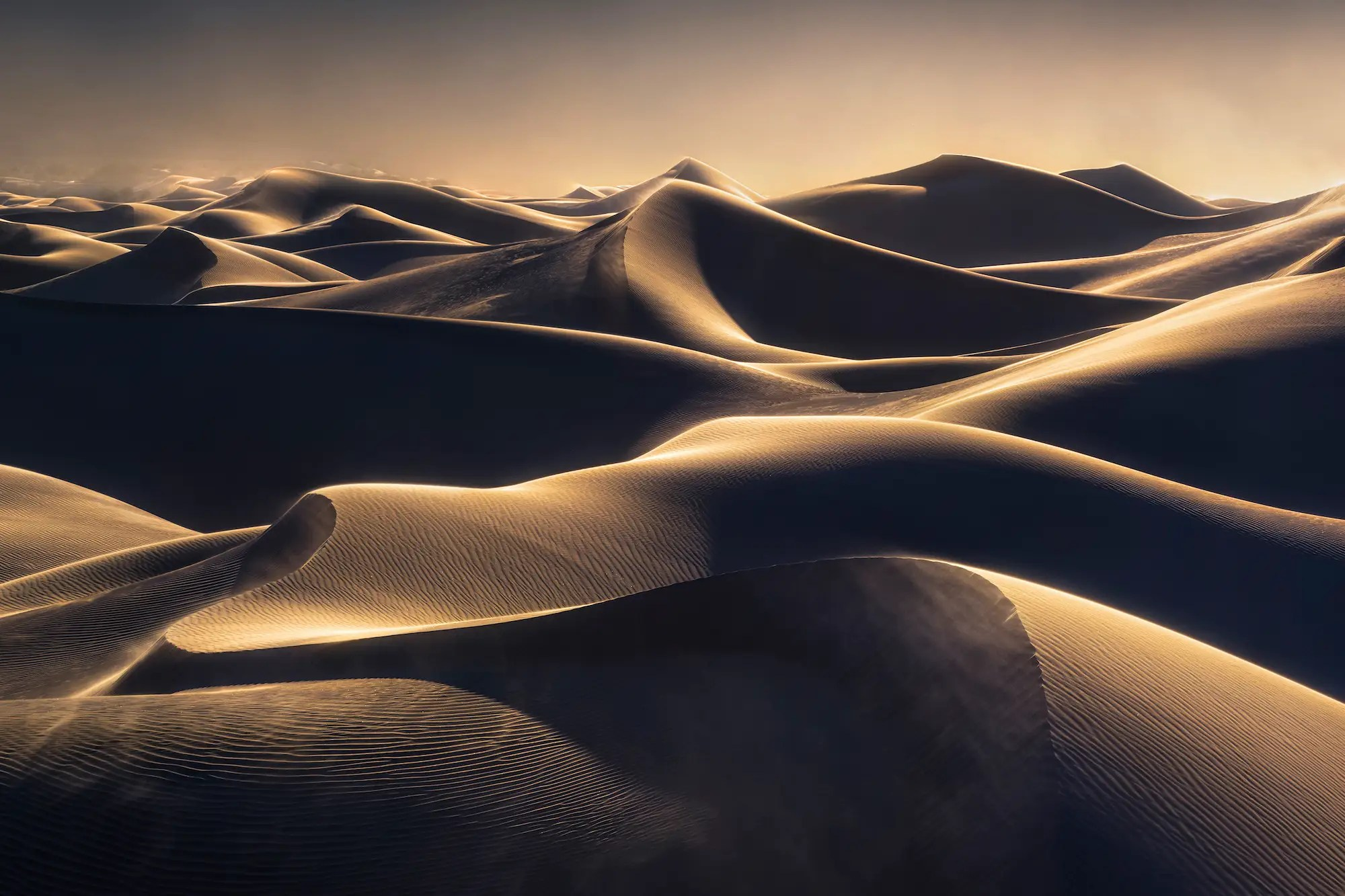 https://i2.wp.com/static2.businessinsider.com/image/5877f933f10a9a2a768b50f3-1200/alex-noriega-won-the-international-landscape-photographer-of-the-year-award-for-his-body-of-work-here-we-see-wind-and-golden-light-on-the-sand-dunes-of-death-valley-california.jpg