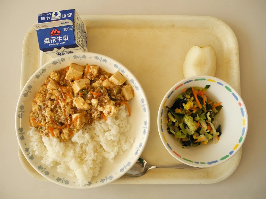 Another option might include tofu with meat sauce on rice, paired with a salad, apple, and carton of milk.