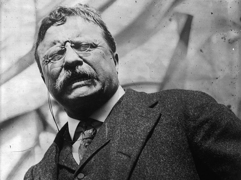 Teddy Theodore Roosevelt president