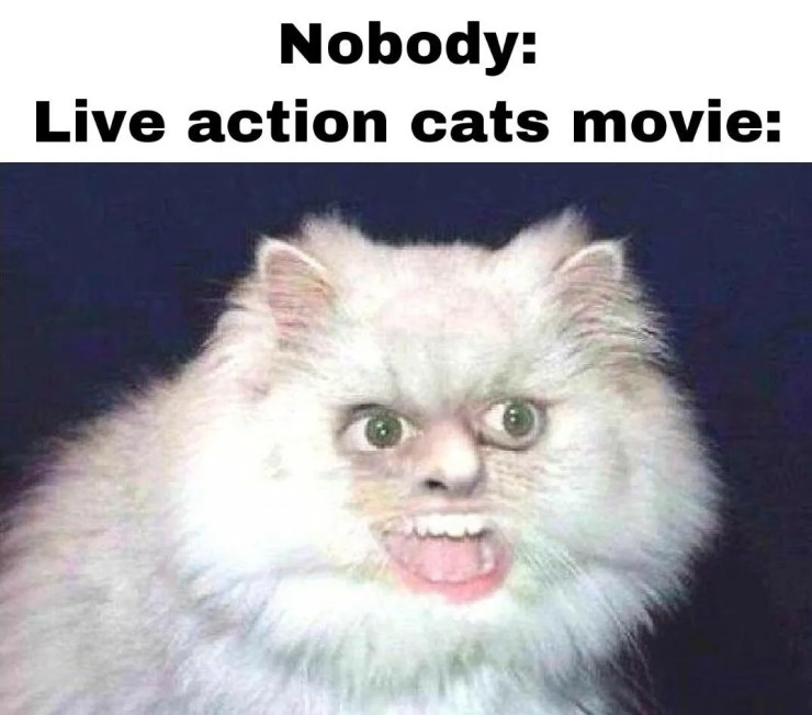 Making Of Cats The Movie Meme Guy