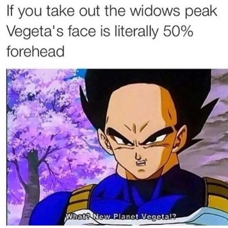 Dragon Ball 10 Hilarious Vegeta Memes That Are Too Funny