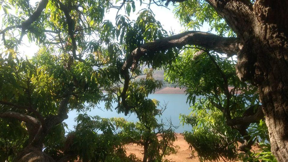 Photo of Eco village | Pune | Weekend gateway | Nature 17/22 by ghumakkad_bandi