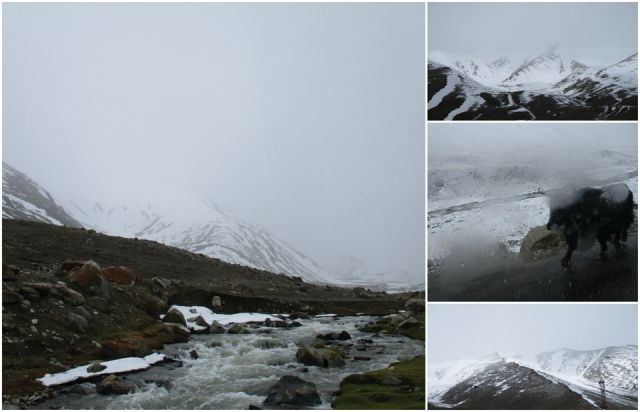 Photo of Perfect Amalgamation of Snow & Dessert : Mystical Ladakh !! by ankita upadhyay
