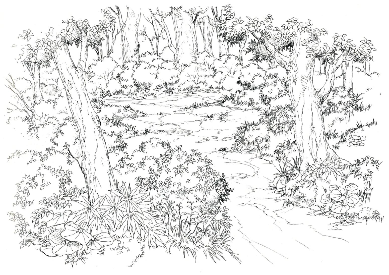 Chocobo Forest Final Fantasy Viii