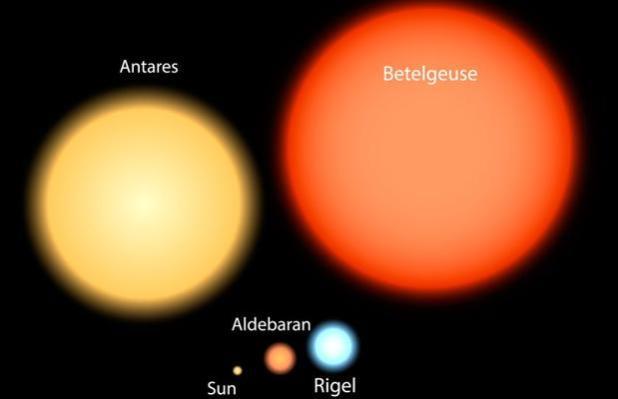 Comparación de tamaños entre diferentes estrellas -incluido el Sol- y Betelgeuse