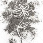 Flower Drawing Image Photo Free Trial Bigstock