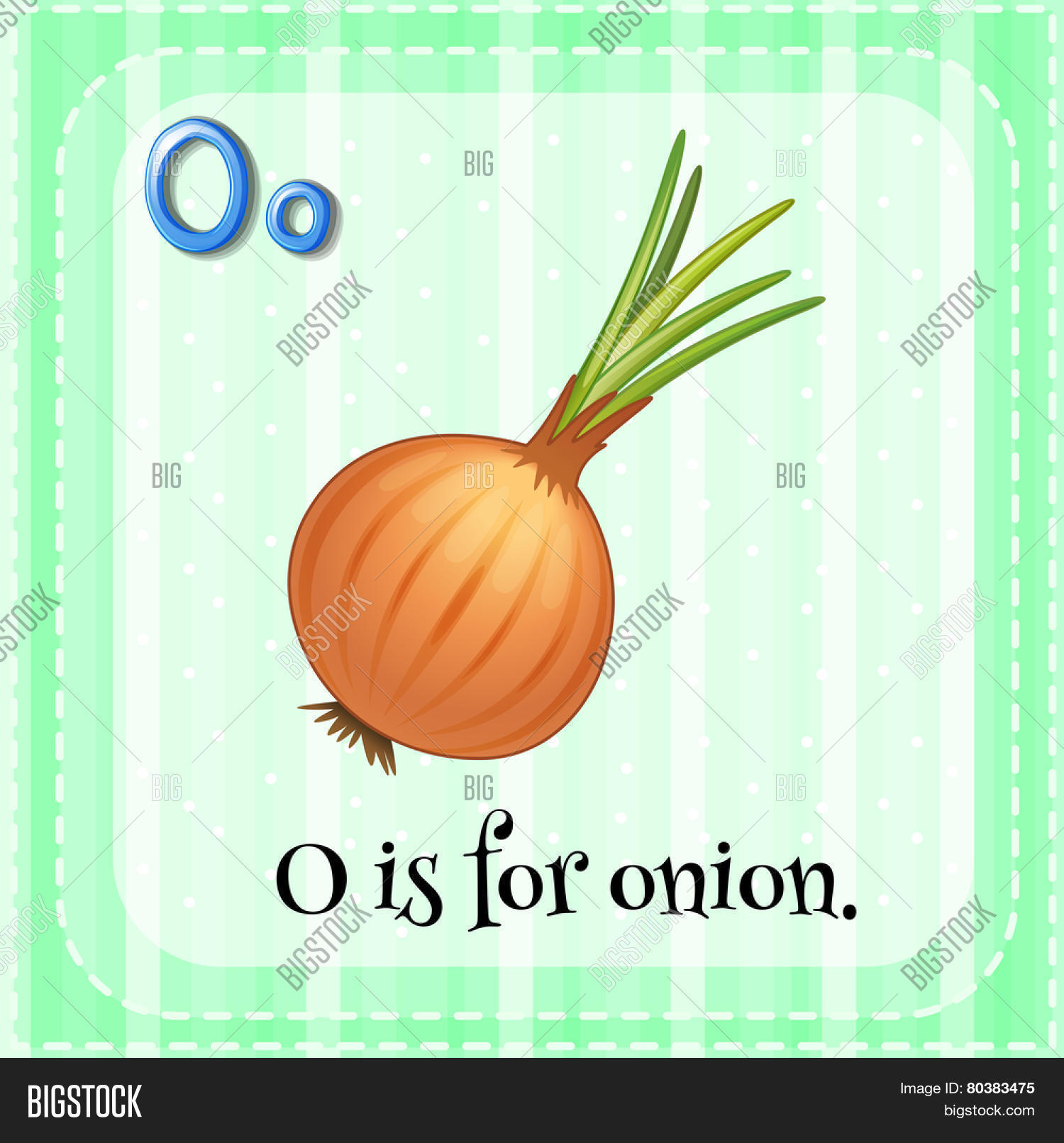 Illustration Letter O Onion Vector Amp Photo