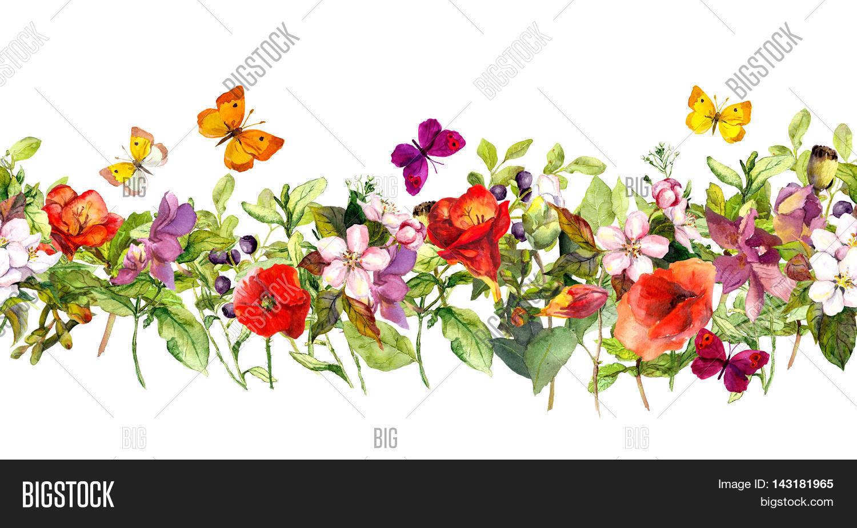 Floral Horizontal Image & Photo (Free Trial)