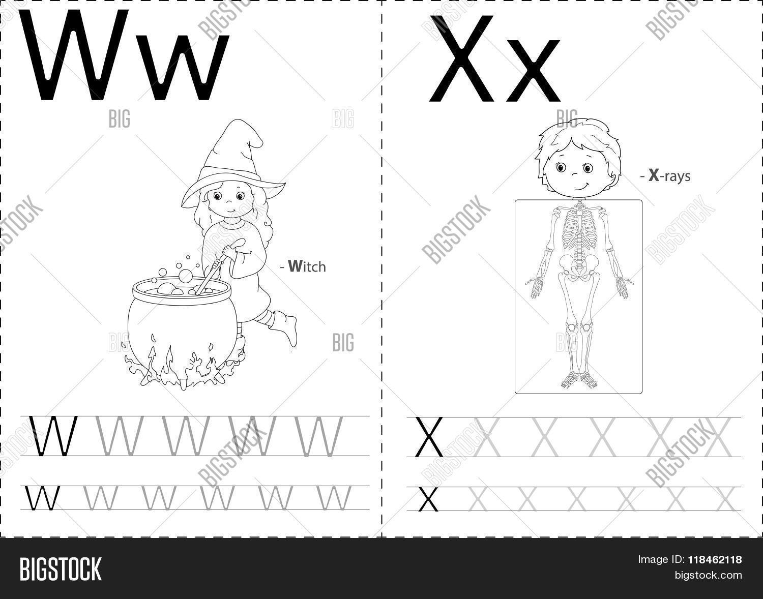 Cartoon Witch X Rays Vector Amp Photo Free Trial