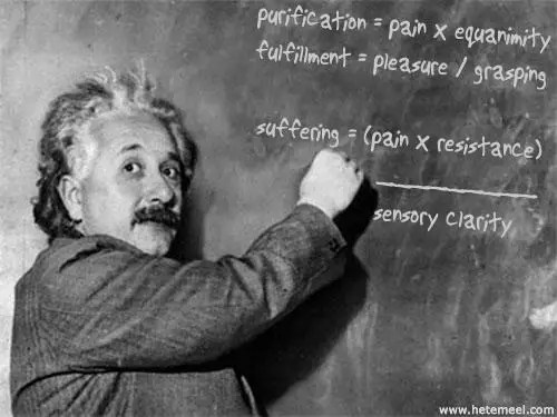 Einstein did not fail his math classes.