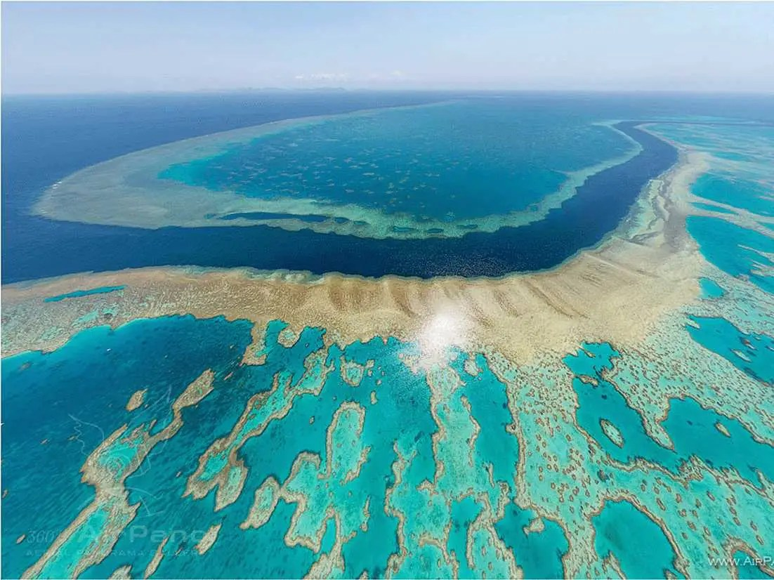 Australia S Great Barrier Reef Will Disappear Within Two