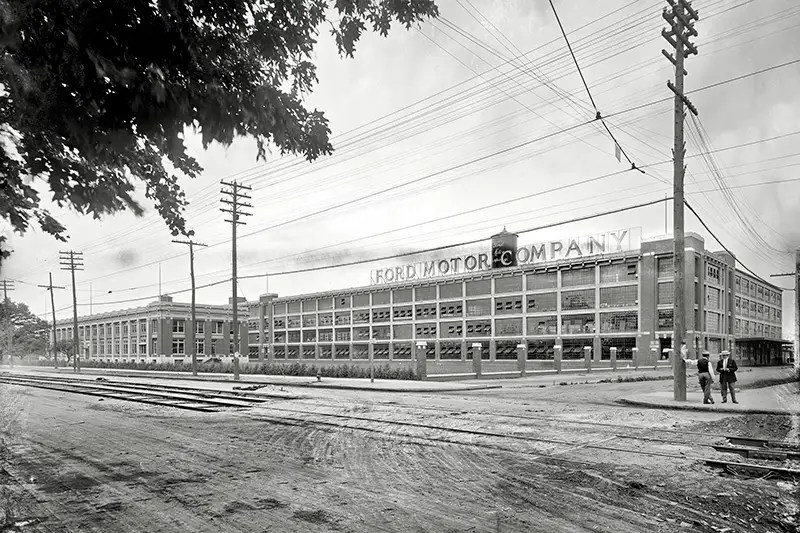 mall plant 2