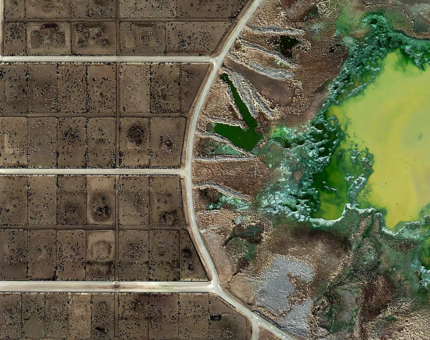 British artist Mishka Henner captured the effects of industrial farming on the American countryside. Here you can see the chemical byproducts from the feedlots at an industrial farm. He exhibited these photos in September.