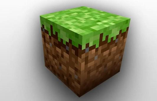 """""""Minecraft"""" dirt"""