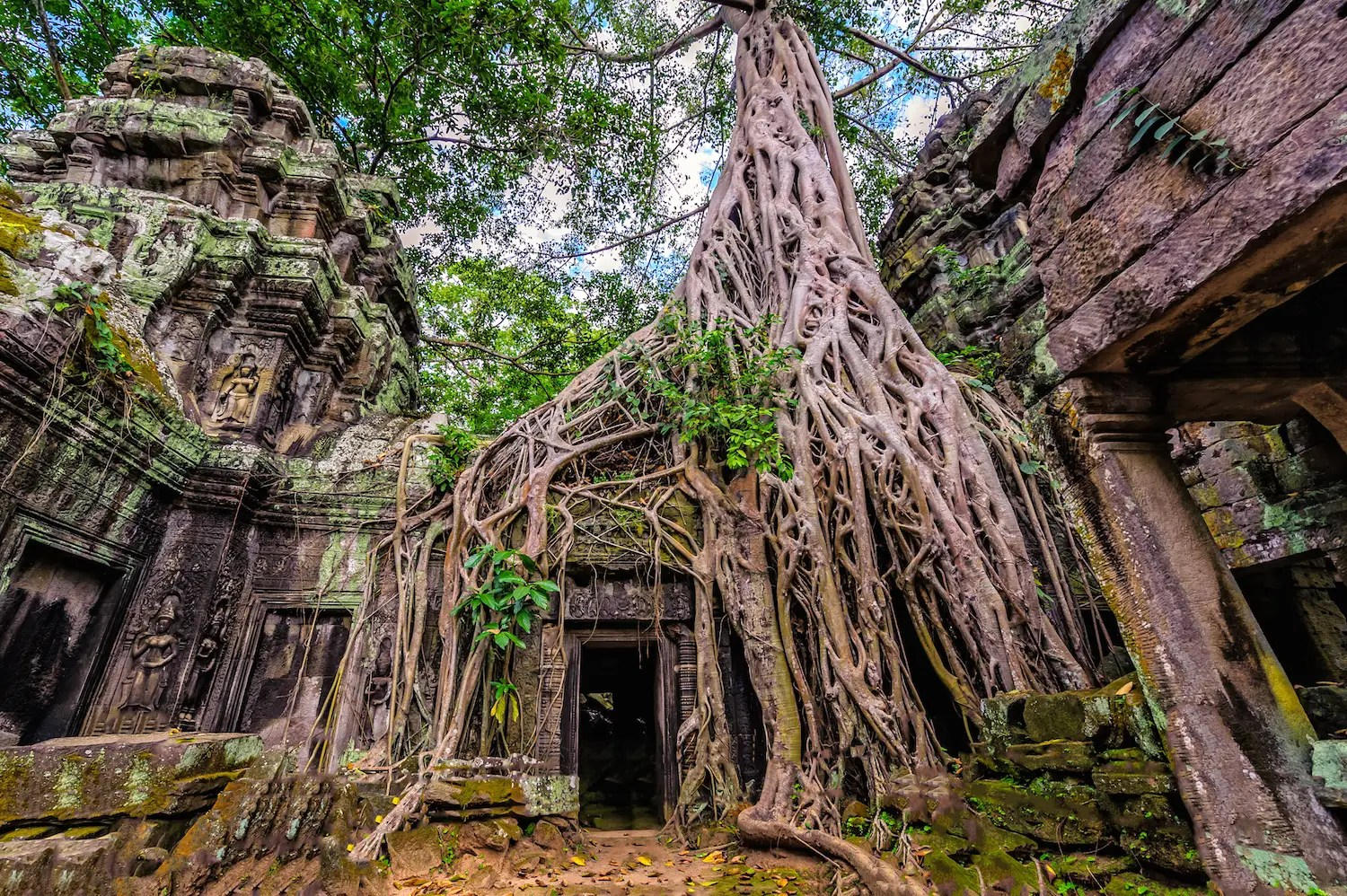 "89. Ta Prohm Temple is one of over 1,000 temples in Siem Reap, Cambodia. It was used in the filming of ""Tomb Raider."""