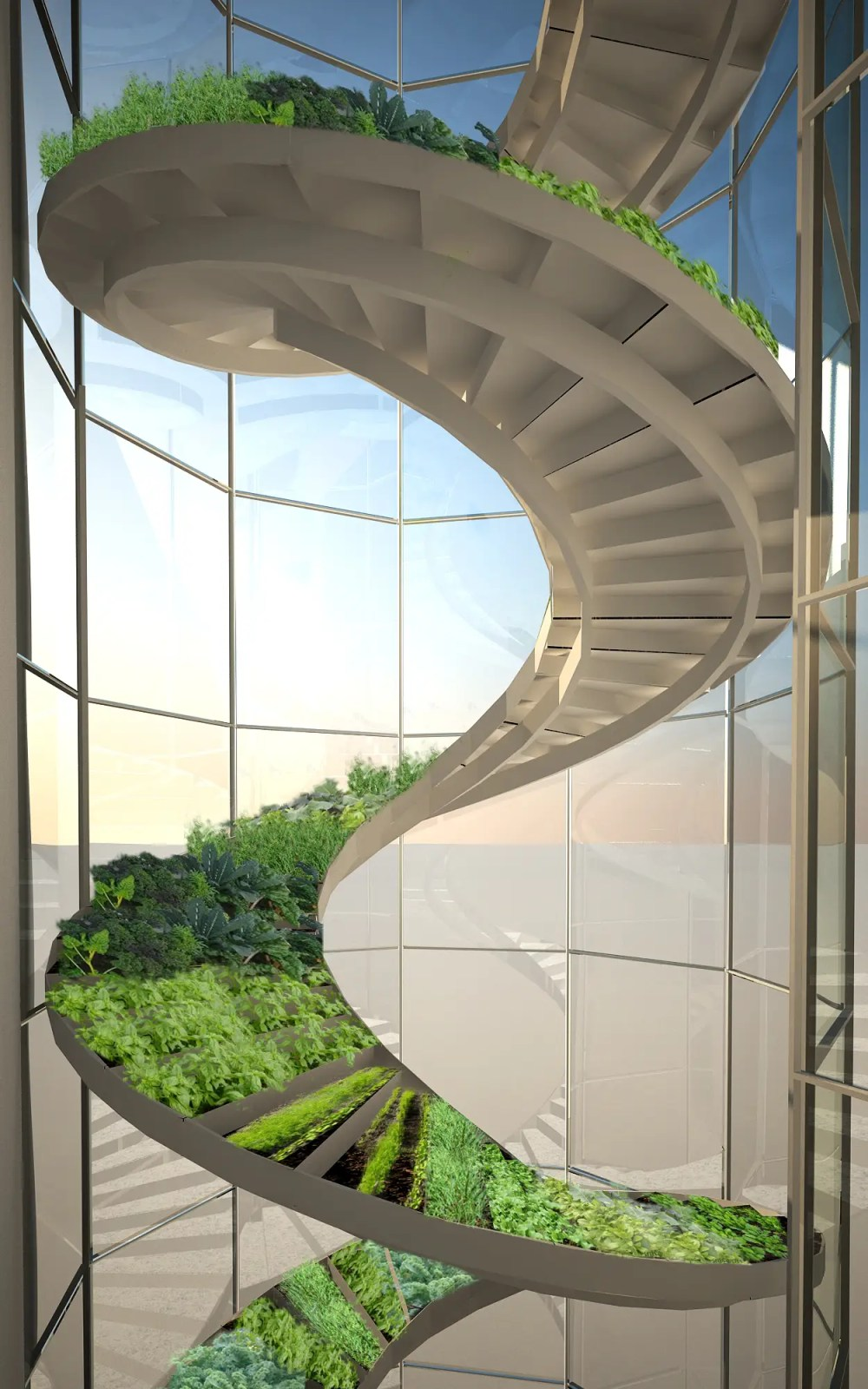 This plantscraper will include a spiraled food production line, which automatically moves the plants from the bottom to the top and back again while they grow. The length of the cycle would depend on the crop, but would normally take around 30 days, Hassle said.