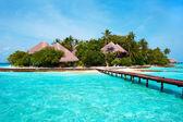 Island in the Ocean. Paradise! — Stockfoto #1399103