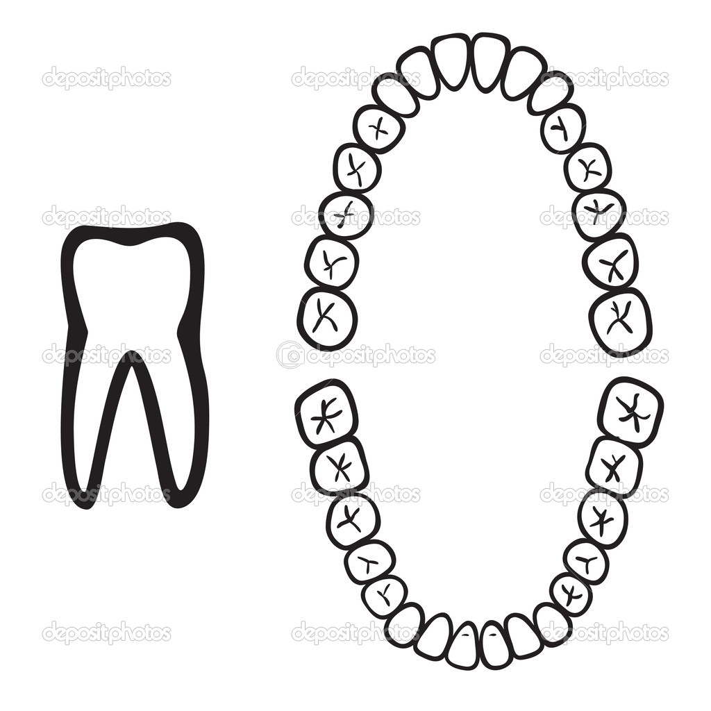 White Isolated Tooth