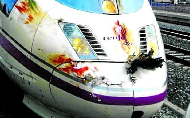 En tren AVE es la causa directa de la muerte de miles de aves.