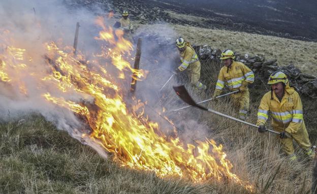 Las autoridades no logran dar con los autores de incendios forestales.