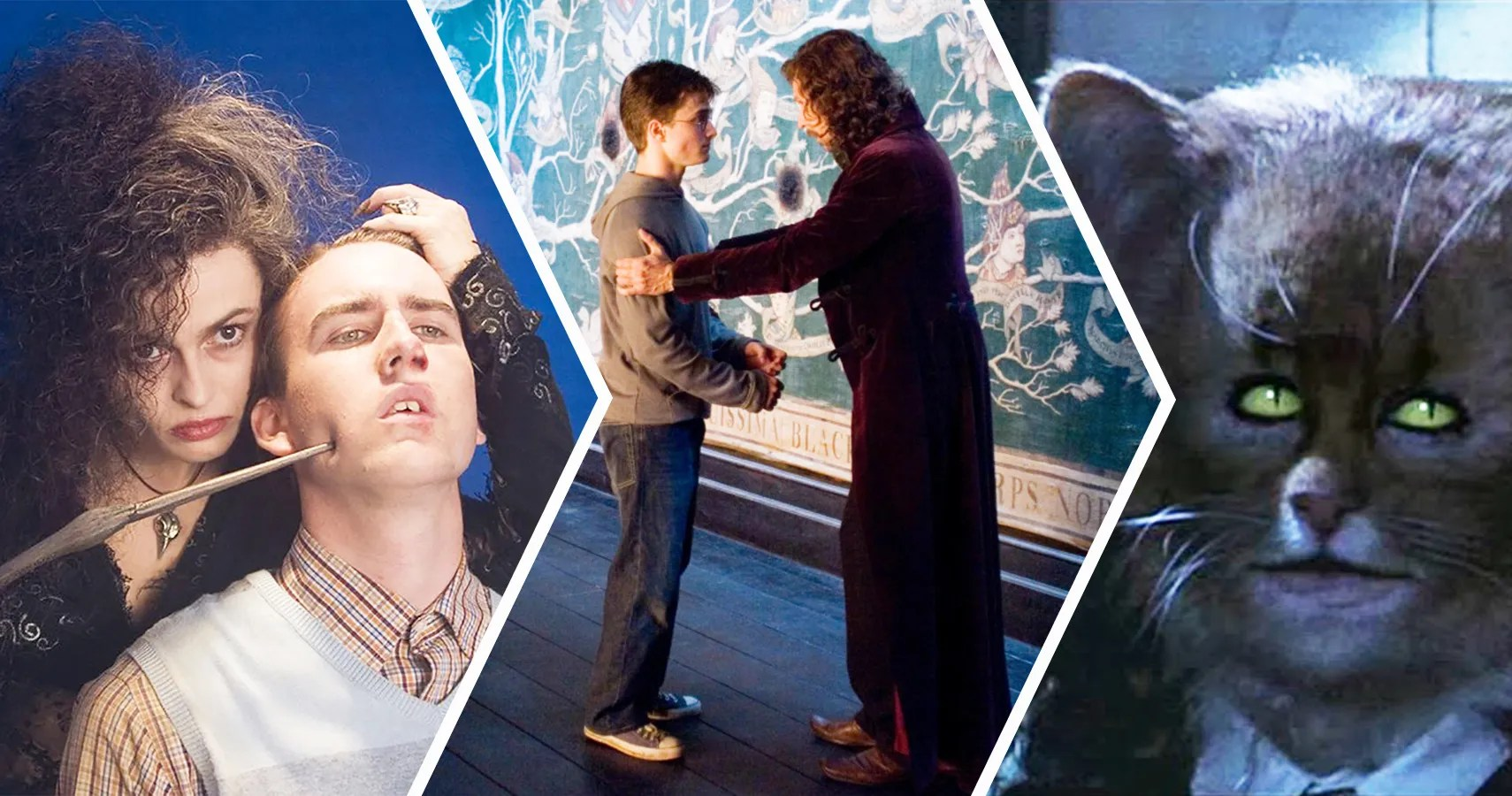 Harry Potter 20 Surprising Characters Fans Forget Are Related