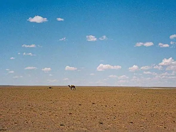 China's enormous Gobi Desert is the size of Peru and expanding 1,400 square miles per year due to water source depletion, over-foresting, and over-grazing
