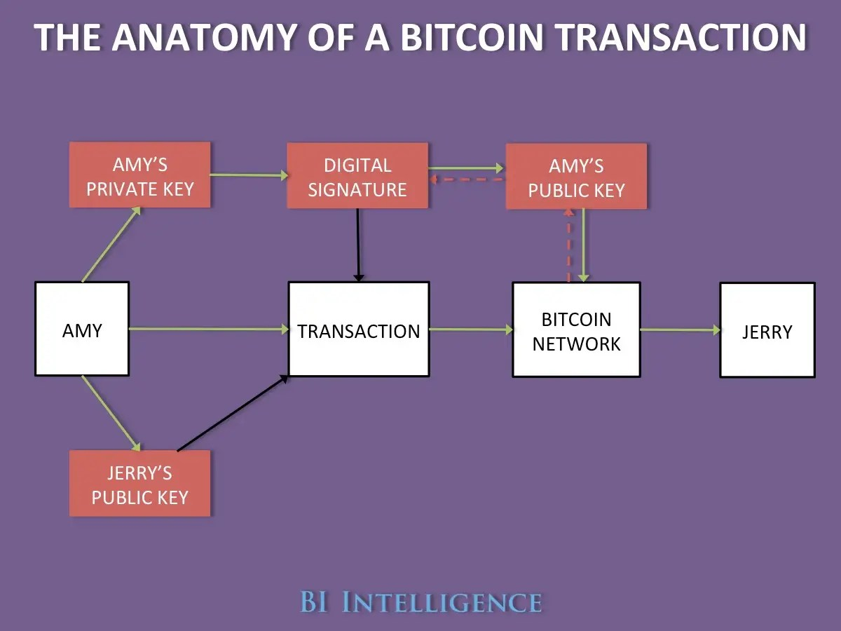Anatomy Of A Bitcoin Transaction