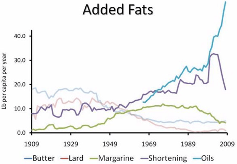 fat consumption in usa (1)