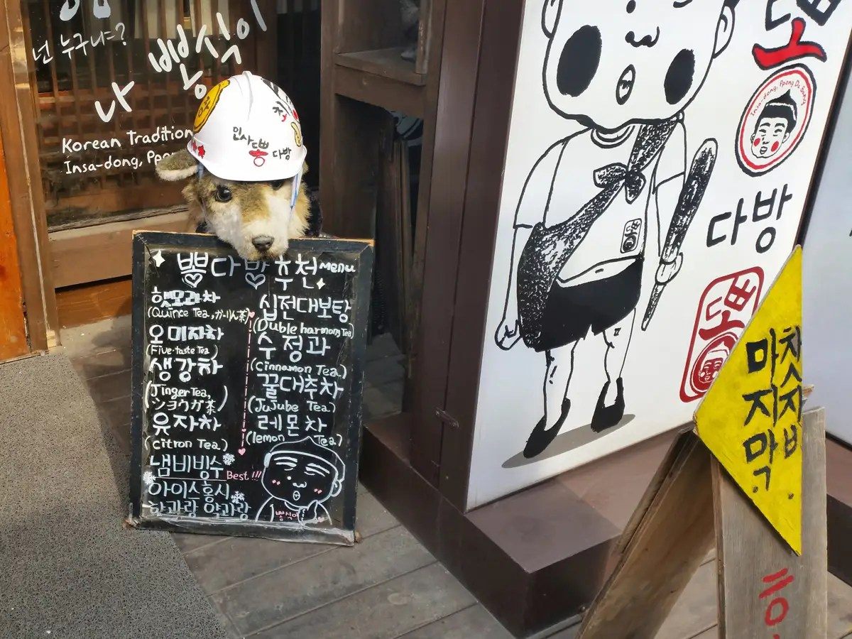 Like this stuffed dog holding a menu.
