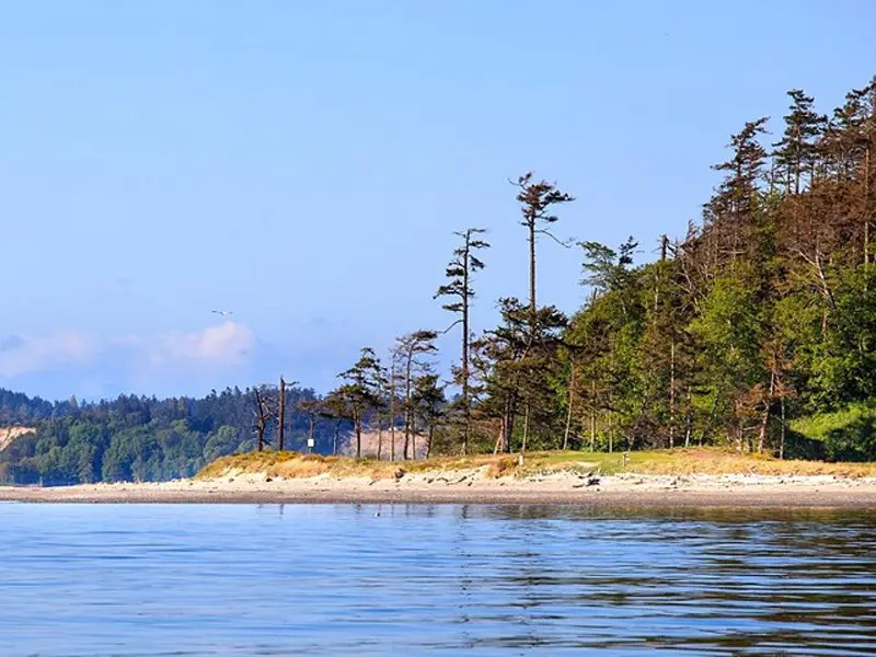 James Island has miles of rugged oceanfront land.
