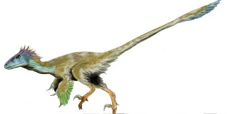 Image result for velociraptor