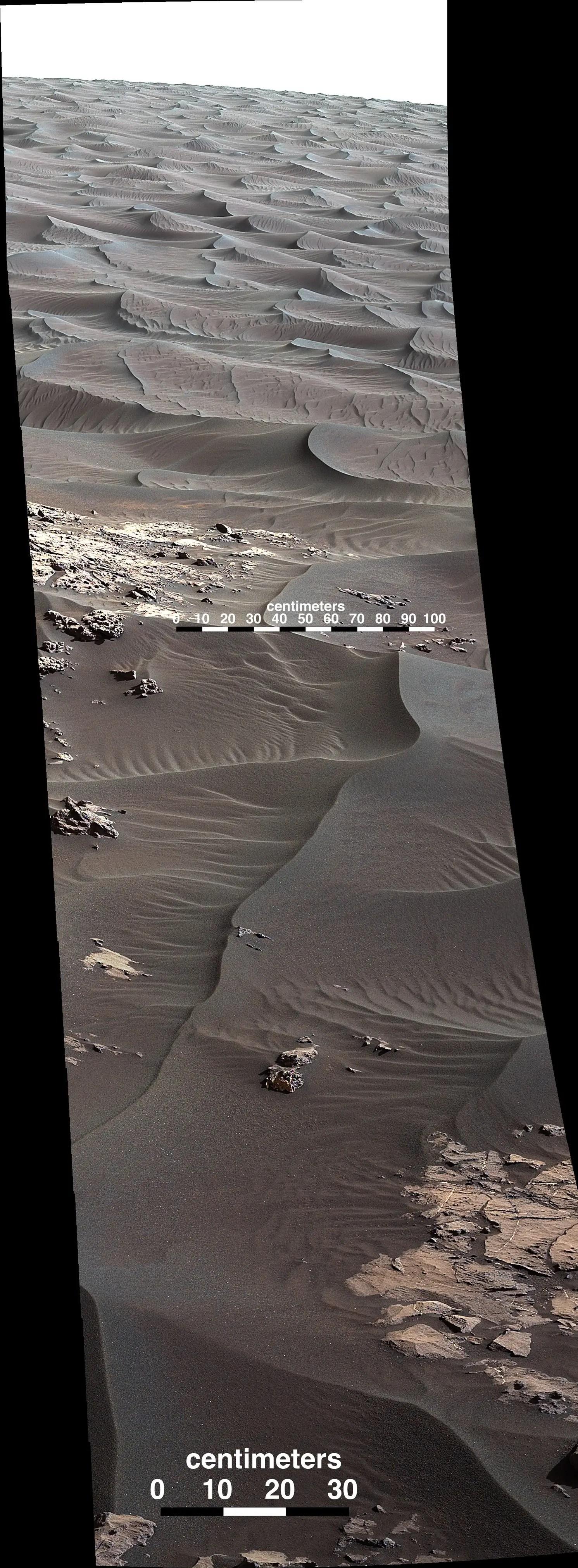 pia20168 figa_sol 1176ml05329_scale b