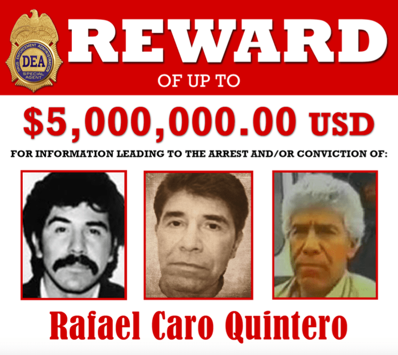 mexico drug cartels