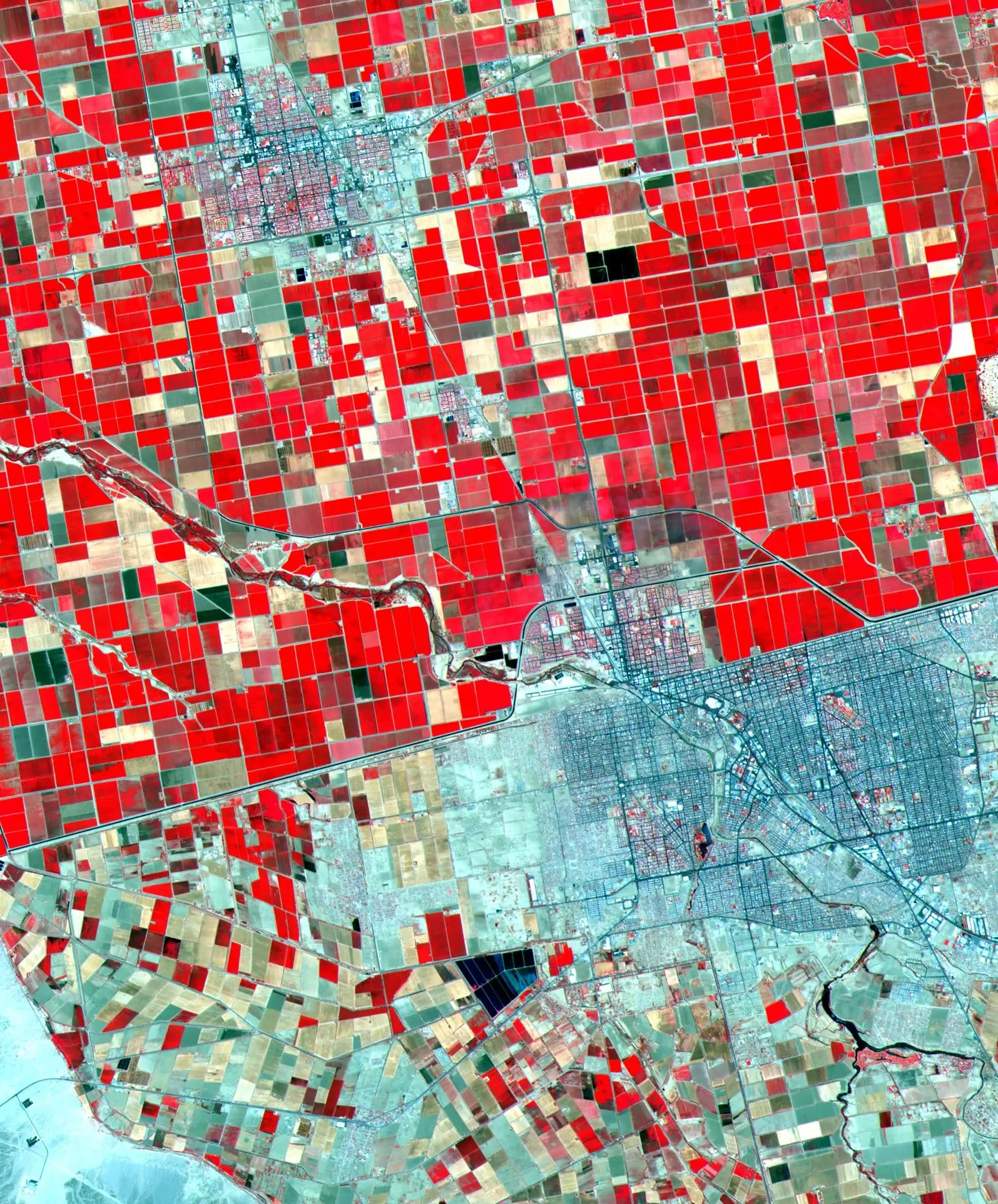 From space, the US-Mexico border is starkly defined by the landscape. Farms are colored in red, so Southern California (top half) stands out.