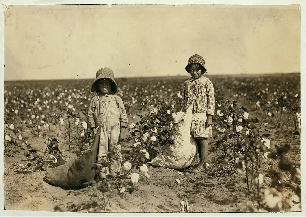 "Jewel and Harold Walker, 6 and 5 years old, pick 20 to 25 pounds of cotton a day. Father said: ""I promised 'em a little wagon if they'd pick steady, and now they have half a bagful in just a little while."" Location: Comanche County--[Geronimo], Oklahoma, October 1916."
