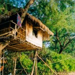 ᐈ Tree House Stock Pictures Royalty Free Treehouse Images Download On Depositphotos
